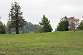 Niles Community Park
